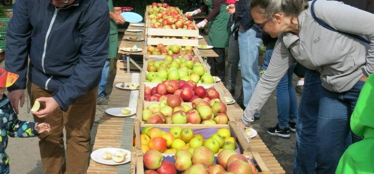 Der OGV auf dem 6. Apfelfest des Obsthof Hörnle 2018